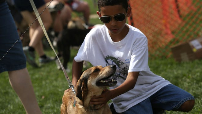 Many people and pooches came out to Marshall Park in Ontario for last year's Strutt Your Mutt festival. The event is in its 15th year and is a fundraiser for the Humane Society of Richland County.