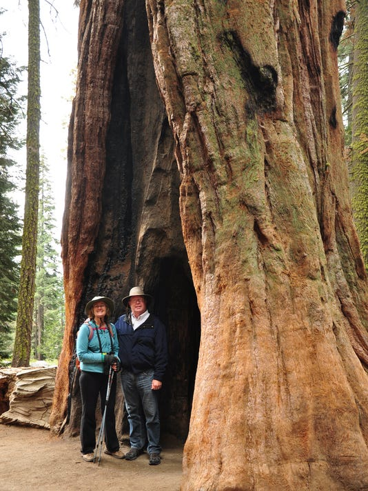 5 national parks in 5 days