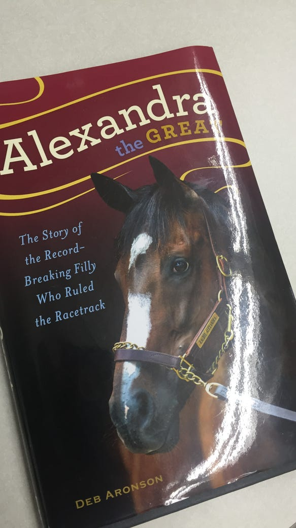 Book cover of Rachel Alexandra