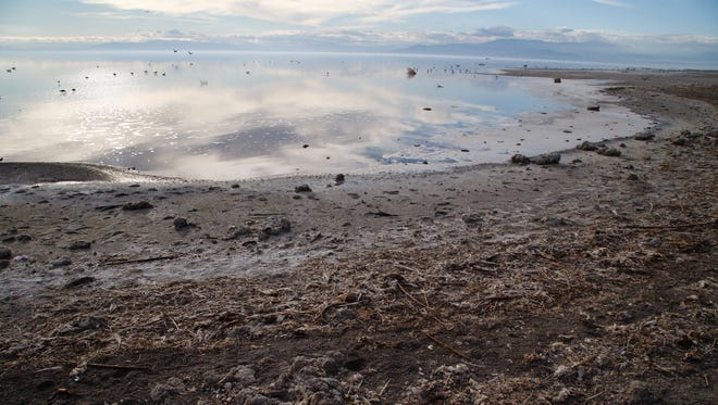 Shoreline filled with fish remains and debris is exposed at the shoreline of the Salton Sea in Bombay Beach, Calif., January 12, 2015.