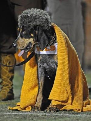 Vols mascot Smokey