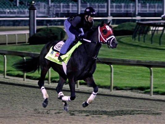 Kentucky Derby entrant International Star, ridden by exercise rider Joel Barrientos, gallops at Churchill Downs in Louisville, Ky., Friday, May 1, 2015.  (AP Photo/Garry Jones)