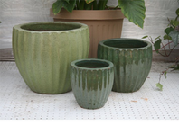 25% Pottery at Christians Greenhouse