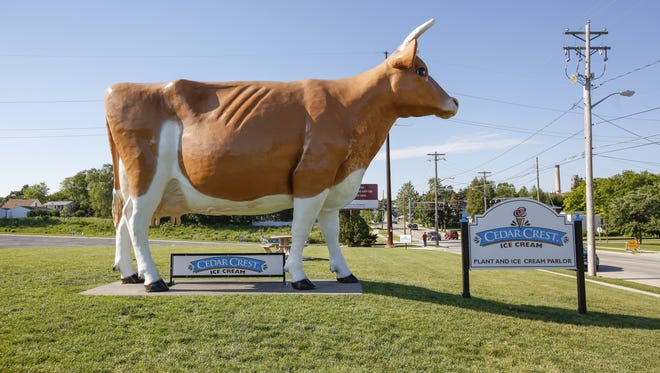 Bernice the cow stands tall and proud June 21 outside Cedar Crest Ice Cream in Manitowoc. The large cow has become a huge tourist attraction to the area.