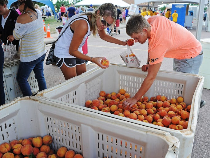 Koty Matthiesen, left, and Nathan Dubbelde, both of Pipestone, Minn., pick their own peaches during the South Dakota Peach Festival on Sunday, July 27, 2014, at Yankton Trail Park in Sioux Falls, S.D.