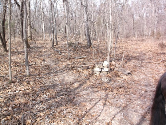 An illegal horseback trail that was cut by someone