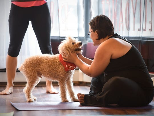 Cutest yoga class ever?