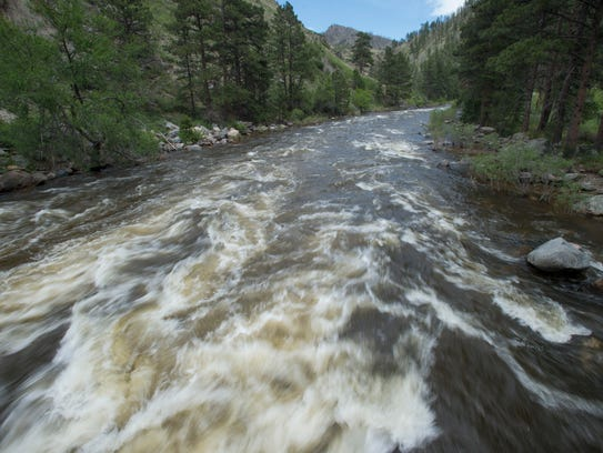 The Poudre River flows high and fast near the Grey