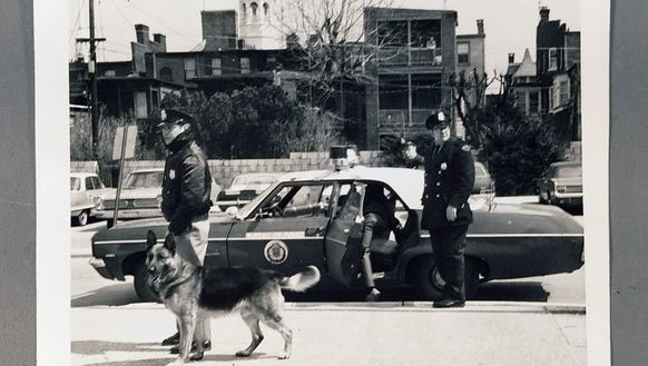 What Is The Name Of Those Police Dogs