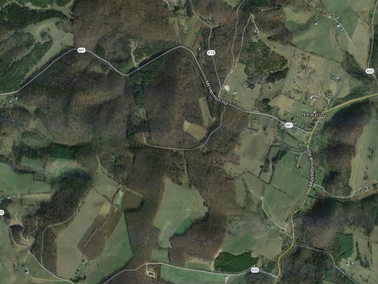 Area where the cow was found.