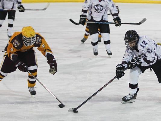 Div. 3 Hockey State Quarterfinals