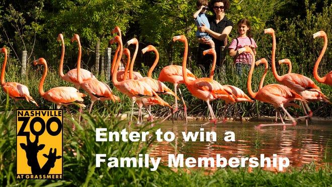 Nashville Zoo contest