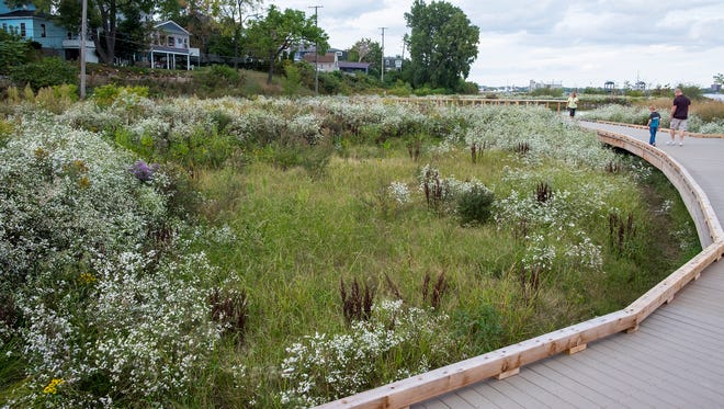 The Friends of the St. Clair River will be looking for bugs at the Wetlands County Park.