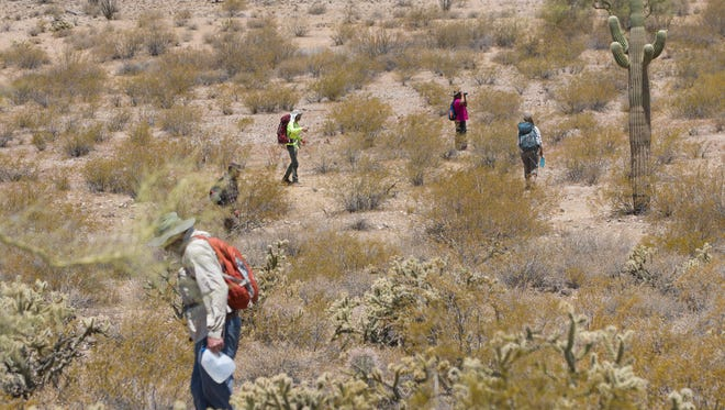 Scott Warren, a volunteer leader of the humanitarian group No More Deaths, heads out June 23, 2017, with other volunteers to search for the remains of migrants who died in the remote rugged terrain after crossing the U.S. border illegally through the Organ Pipe Cactus National Monument near Ajo.