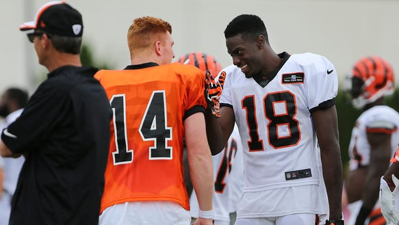 bengalscamp 13