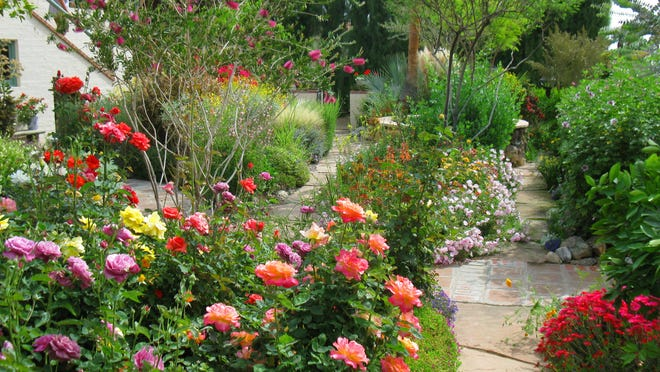 Fabulous gardens have opened their gates to attendees of the previous Palm Springs Garden Tours in wetter years.