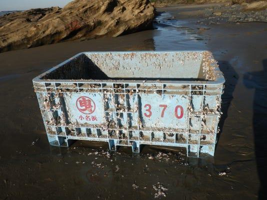 SAL tsunami debris