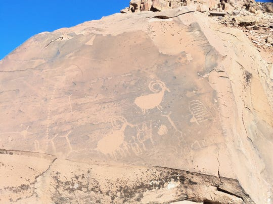 Petroglyphs of bighorn sheep and other drawings at Little Black Mountain Petroglyph Site.