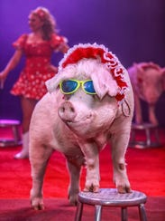 The Pork Chop Revue, a comedy/animal variety act featuring