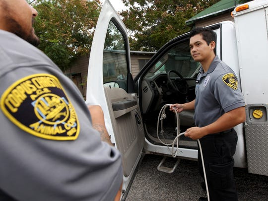Edward Cruz (right) with the city's animal control department gets ready to try and snare an aggressive dog Nov. 19, 2014 that was reported near Coles High School in Corpus Christi.
