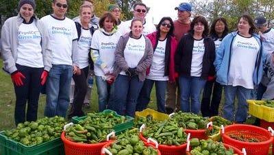 Volunteers from PepsiCo partnered with Volunteer New York! -- a member of Nonprofit Westchester -- to harvest vegetables in Yorktown in 2013.