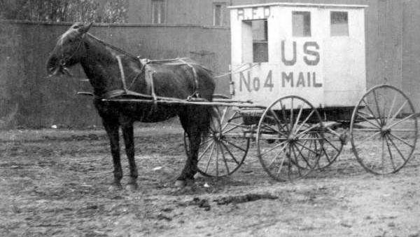 Rural Free Delivery (RFD No. 4) wagon in Arcadia, Fla.