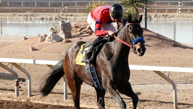 K P Wildcat romps home to win Friday's $75,000 Island Fashion Stakes at Sunland Park and Casino.