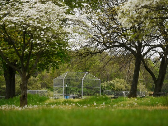 Holtwood Park has baseball fields, pavilions, parking