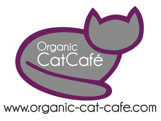 The Organic Cat Cafe will open in downtown Greenville
