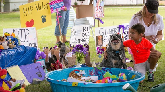 Folks at a makeshift memorial for dogs lost at Green