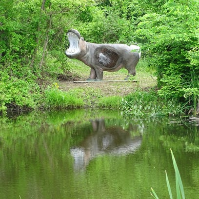 Archers will zero in on this life-sized hippo target