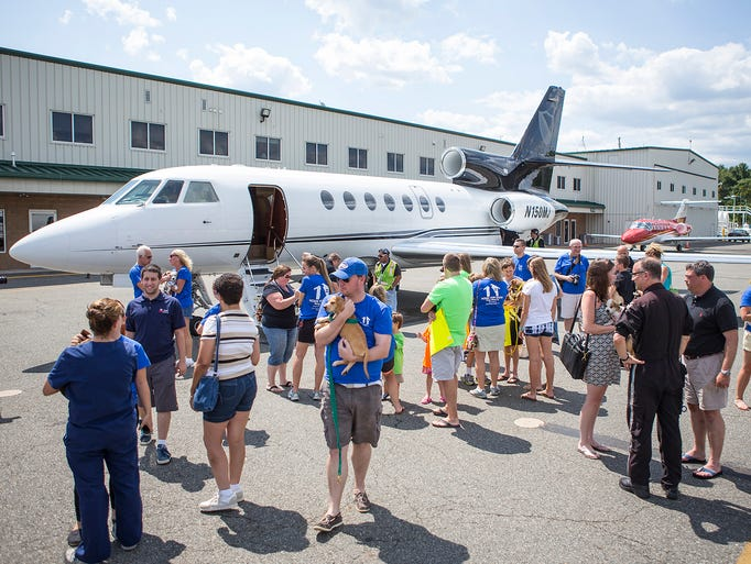 Members of Home for Good Dog Rescue greet dogs recently released from high-kill shelters in the South at Morristown Airport on Sunday, August 10, 2014. Morristown, NJ. Correspondent/Alex Lewis/Daily Record BRI EST 0811 Home for Good Dog Rescue