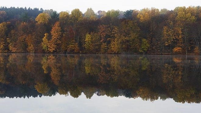 Changing colored leaves are reflected in the water of a lake near Chappaqua, N.Y.
