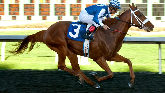 Metaboss closed to win Saturday's El Camino Real Derby at Golden Gate Fields, earning 10 Road to the Kentucky Derby qualifying points.