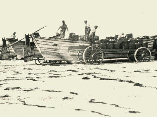 A brief history of pound fishing on the new jersey shore for Nj shore fishing