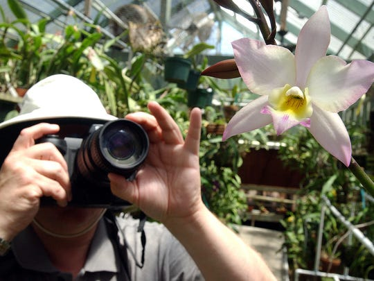 Learn how to improve nature photos with Lightroom software at the South Texas Botanical Gardens.