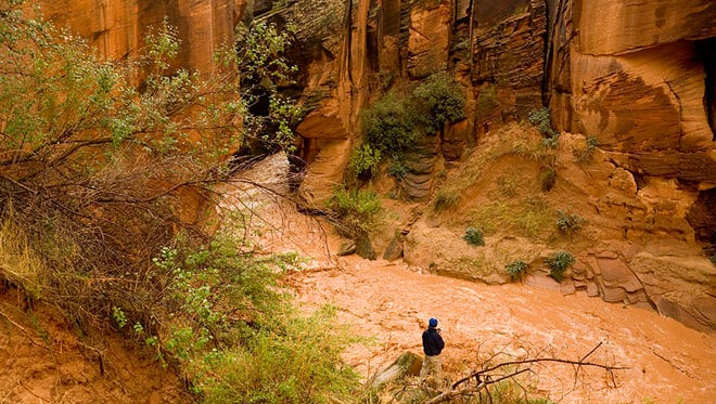 3. Flash floods - Narrow slot canyons make for some of the most spectacular hikes in Southern Utah but when the rains come they can quickly fill up deadly torrents of rushing water. Pay attention to the weather reports and if there's any chance of rain at all in the forecast, stay out of slot canyons.   Hikers in Buckskin Gulch in the Paria Canyon-Vermilion Cliffs Wilderness, experience a flash flood in this 2006 file photo.