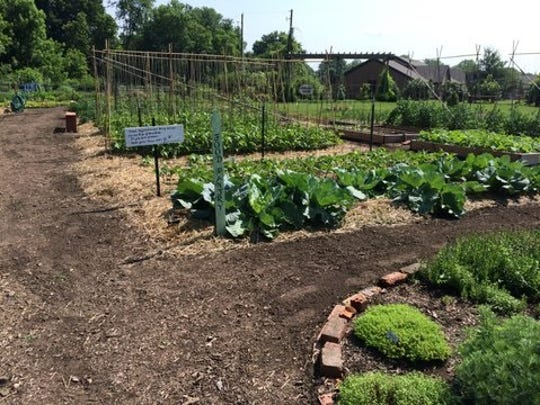 People participating in the Licking County Master Gardener Volunteer's new vegetable gardening program will have the opportunity to practice skills in the learning garden at the Ohio State University Extension.