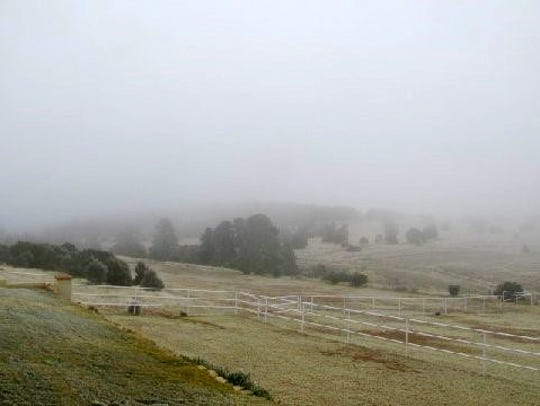 The icy fogs moves into Midgett's ranch, BURRRRRR
