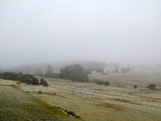 The icy fogs moves into Midgett's ranch, BURRRRRR