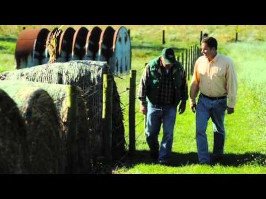 braley.farmer