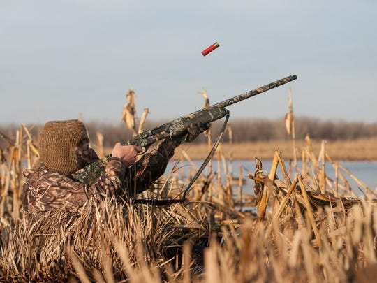 A duck hunter takes a shot at a passing duck from his