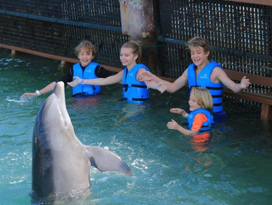 Tanner, Thomas and Jude Nichols and Madelyn Wood enjoy a dolphin encounter during their spring break trip in Cancun.