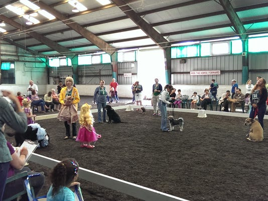 21st Annual Dog Days Canine Competition on Sept. 17 PHOTO CAPTION