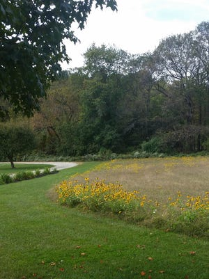 Bonnie and Alan Robb.seeded 15,000 square feet of lawn to create a meadow at their home.