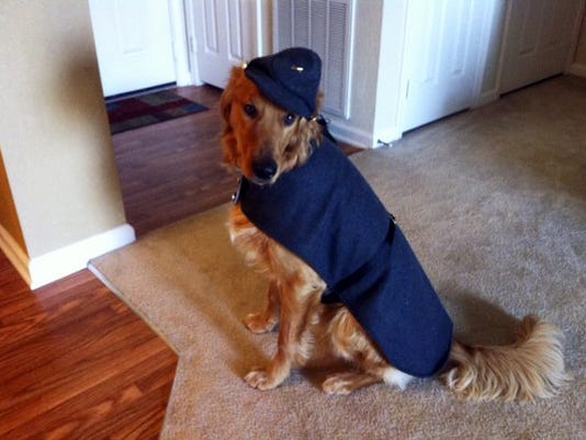 A canine wears a General Jackson uniform by Puppy Wear. Civil War costumes are custom-made for pets in either confederate grey or union blue.