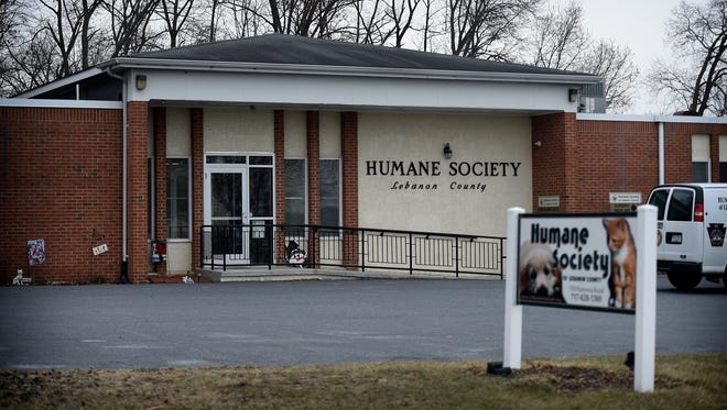 The Humane Society of Lebanon County is being scrutinized for a local veterinarian for the accuracy of the medical information it provides to adoptive owners.
