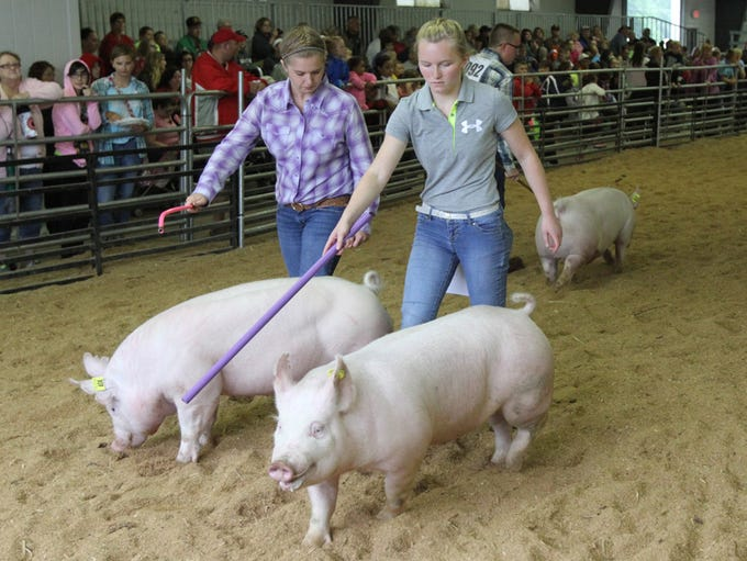 Photos from day 1 of the Marion County Fair on Monday,