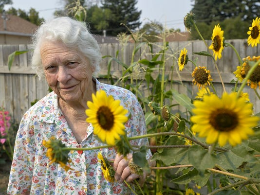 636398950074812539-08302017-christina-hoppe-sunflower-b.jpg