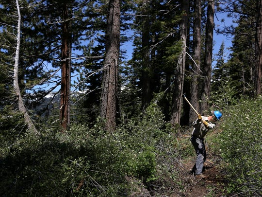 Chris Binder of the Tahoe Rim Trail Association works on the Incline Flume Trail above Lake Tahoe on June 15, 2017.